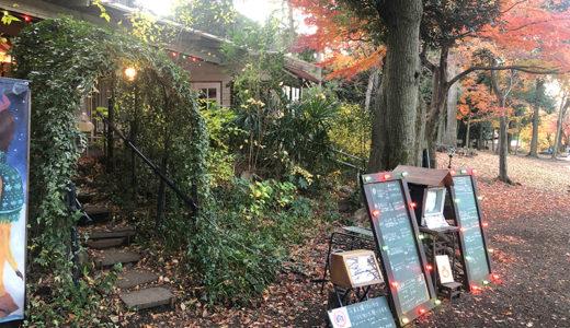 秋の紅葉、井の頭公園散歩。